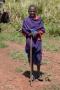 herde i Tanzania