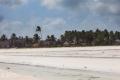 vit strand Zanzibar
