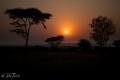 solnedgång i Serengeti, Tanzania