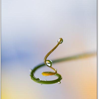 Tavla - Vattendroppar i form av en slingrande väg