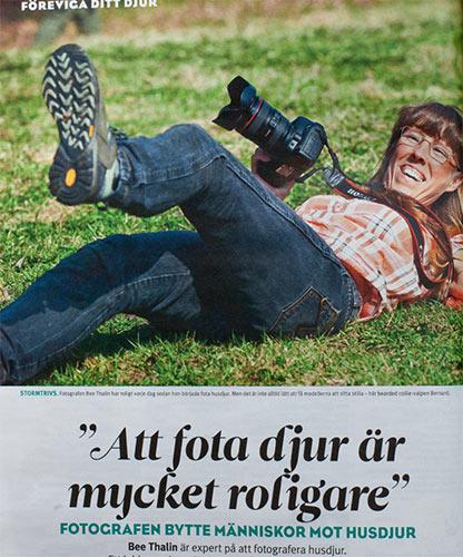 Artikel i Expressen