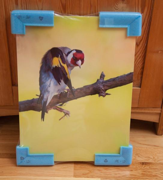 konsttavla fågelmotiv