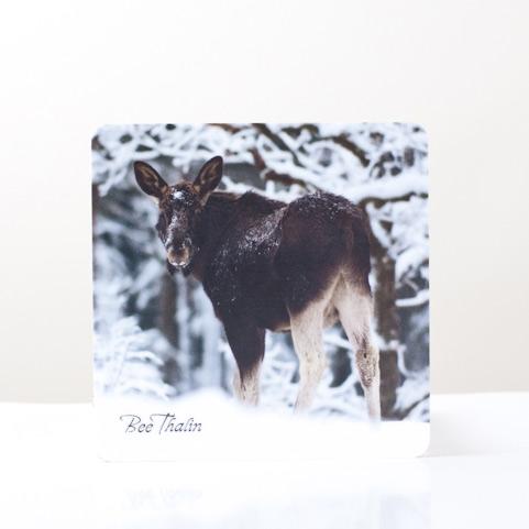 Glasunderlägg - The Elk