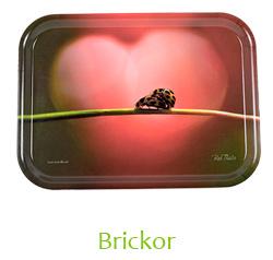 Webbshop Inredning Brickor