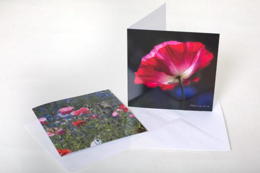 Vallmo konstkort med kuvert